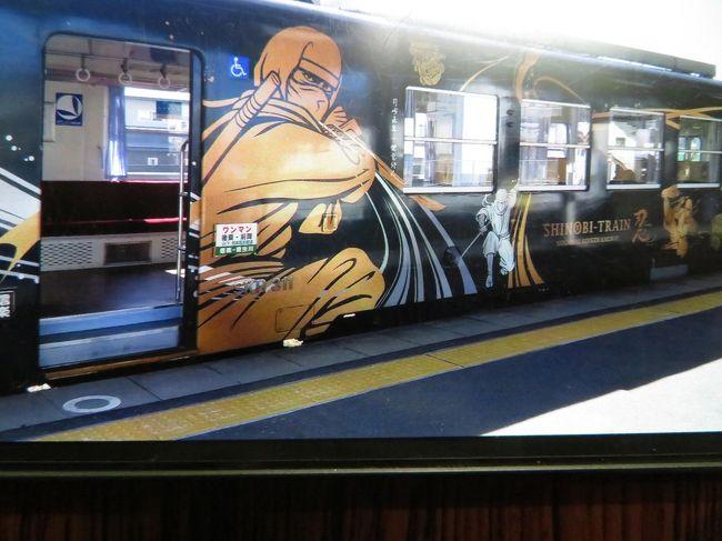 伊賀鉄道<忍者列車>を乗り継ぎ、JRで伊賀上野~柘植~貴生川へ。貴生川からは信楽高原鉄道で信楽へ。終着駅「信楽」までは、14.7キロ24分の短い旅。高原鉄道の名が示すように急勾配を山間を縫うようにゆっくり登っていく。右左に変わる景色を目がぐるしく追っているとアッという間に着いてしまう。かつて昭和天皇を狸の置物が並んでお迎えしたことで、信楽の狸は一気に有名になり、信楽=狸になったようだ。どこを向いても狸、狸、狸がお出迎え。信楽の駅舎の玄関口にどっしり構えて出迎えてくれる高さ5メートルの大狸の置物にはビックリです。信楽焼きの極意を感じます。狸の影に隠れて気の毒だが、花器、日用調度品など一品一品を味わいながらの町歩きは楽しい。本場だあけあって値段も安い。コーヒーカップはとても気に入りました。信楽高原鉄道の始発駅の貴生川はJR草津線・近江鉄道線の接続駅でもあります。時間が許す向きは、琵琶湖東側を東西に結ぶ近江鉄道を使って琵琶湖へ抜けることをお勧めです。また、忍者に興味をお持ちの向きは、JR甲南駅から徒歩30分(2キロ)の甲賀流忍者屋敷がお勧めです。