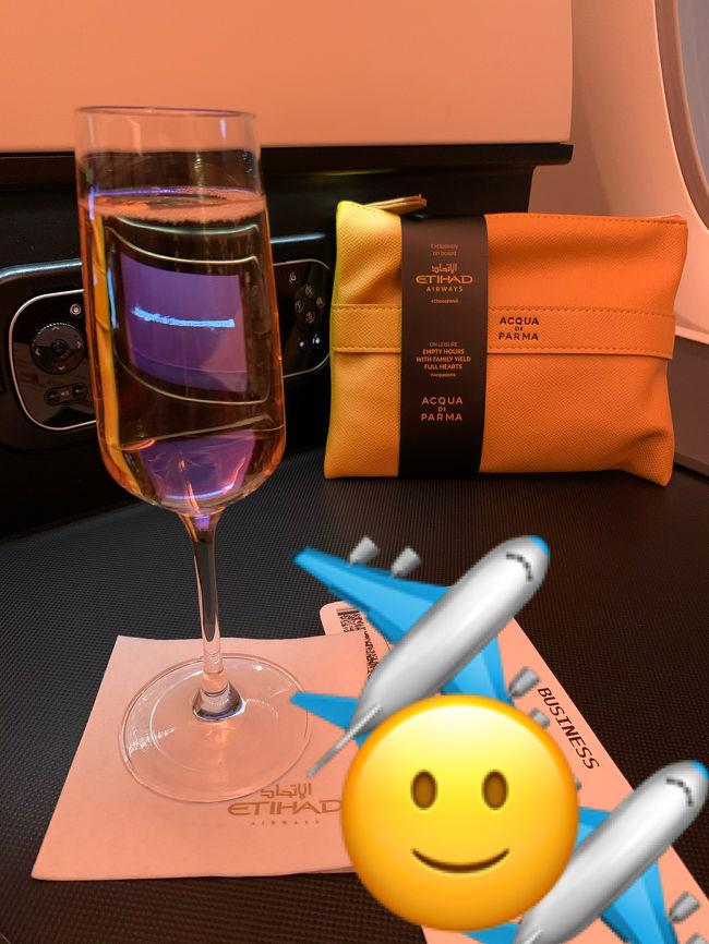 あるアーティストのライブ参戦が主目的でフランスに行きました。基本はパリでモンサンミッシェルには1泊だけ。<br /><br />【エアライン】エティハド航空<br />【経路】成田~アブダビ~パリ(CDG)<br /><br />【日程】<br />2/23 17:00 成田出発<br />2/24 7:10 パリCDG空港着<br />2/27~28 モンサンミッシェル<br />2/28夕方~<br />3/5 10:10 パリCDG空港発<br />3/6 12:30 成田着<br /><br />10~20分ほどの多少の遅れはあったと思いますがだいたい定刻通りの発着でした。<br /><br />パリ滞在で一番恐れていたスリにも結局遭わずに済みました。