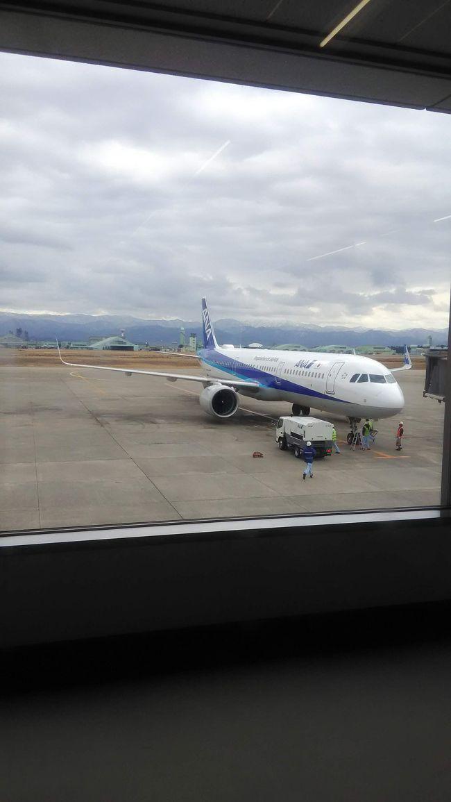 2020年フライトレビュー~1レグ目 ANA  NH754   小松→羽田