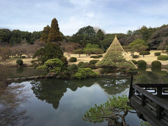 代々木~新宿エリアを散歩。<br />人気のお菓子屋さん、カレー屋さんを巡って、新宿御苑へ。<br />桜の時期には早かったですが、都会の中に広がる自然の中を歩き、ゆったりした気持ちになりました。