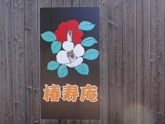 ゴンママの奈良観光 大和郡山市の椿寿庵で椿の鑑賞。