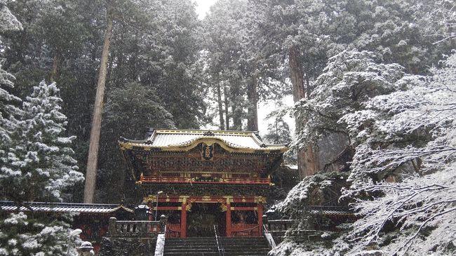 一泊で日光にいってきました。<br />修復を終えた輪王寺をお参りしたら中禅寺湖へ、中禅寺金谷ホテルに泊まって温泉を楽しんできました。<br />天気は雪、とても寒かったですが美しい雪景色に息を飲みました。<br />その記録です。