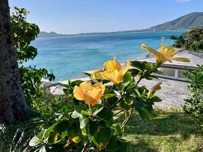 妹のマイルがそろそろ切れそう。。。そして『綺麗な海を見たい!』<br />というので、 JALの『どこかにマイル・南の島』に申し込み。<br />6,000マイルで、鹿児島発か沖縄発の南の島に行けま~す♪<br /><br /> 今回は鹿児島発のプランで。<br />予め、希望の島を3つ決めて(3つ候補地から決まります)、あとは何処に決まるか運だめし...(この待つ間のドキドキ感も面白い!)<br />私たちの希望は、奄美大島、与論島、沖永良部島でした。<br /><br /> じゃ~ん!奄美大島に決定!<br />初めての3泊4日の姉妹旅♪とっても楽しみ♪<br /><br />~  *  ~  *  ~  *  ~  *  ~  *  ~<br /><br /> 2日目は奄美大島の北半分をドライブしてみる事に♪<br />まずは、ホテルから一番遠い「マテリヤの滝」へ。<br />その後、「金作原原生林」の看板を見て、行ってみよう!という事にしたのですが。。。実は、簡単に行ける所ではなかったのです!<br />(緊張のため、写真を撮る余裕なく。。。失念)<br /><br />クネクネの細い道を行けども行けども辿り着けず。。。携帯は圏外だし。。<br />怖くなってUターン。<br />金作原原生林へこれからいらっしゃる方は、絶対ツアーで行かれる事をオススメします。<br />