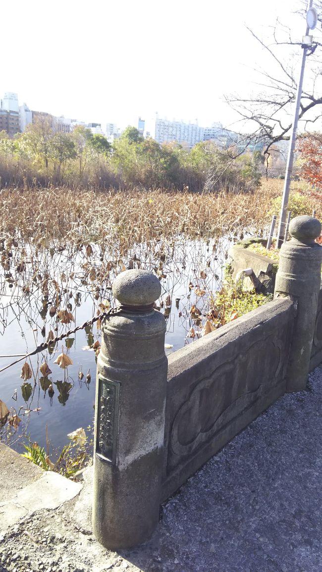 上野の散策2019年12月パート6