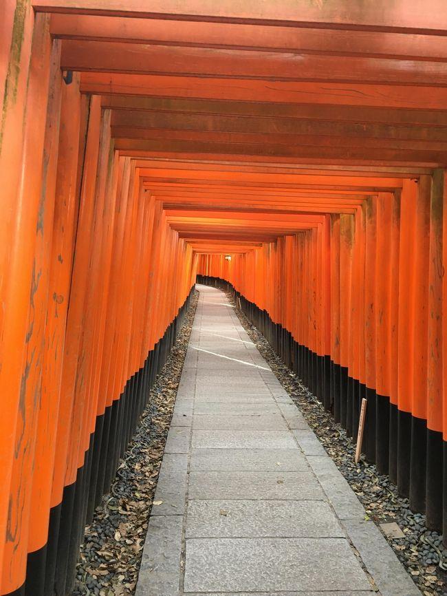 行きは夜行バスで帰りは何故かセントレアから成田へ!?<br /><br />そこそこ観光客はいましたが、5~6年ぶりなので比較できませんが、<br />良かったですよ。<br /><br />3/12 東京 23:00→京都 6:45(VIP101号)<br />3/13 京都観光(主に伏見地区)<br />3/14 京都 10:30→名古屋 11:04(のぞみ220号)<br />    NGO 14:30→NRT 15:45 (NH494)