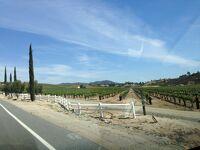 カリフォルニア州 テメキュラ - ワイナリー道路をドライブ