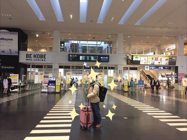 妹を迎えに神戸空港へ、そして神戸IKEAで半年ぶりの姉妹ディナーをしました
