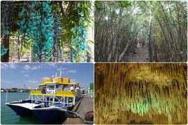 2020年3月 わくわくチケットで沖縄観光
