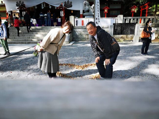 ドライブ 箱根神社~来宮神社 2020 03