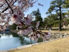 おんたいむ京都