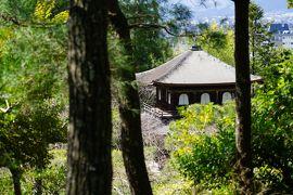2020京都 哲学の道あるく旅(銀閣寺&春の特別公開の霊鑑寺)