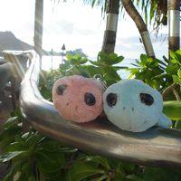 年明けのんびり5回目のハワイ⑤帰国日