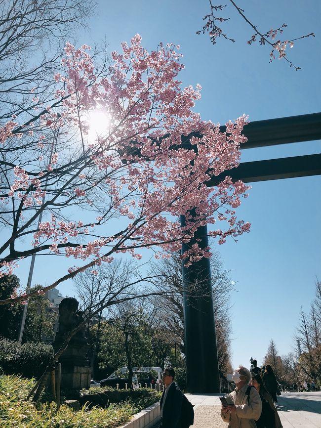 コロナコロナでヨガスタジオ行くのも自粛…<br />運動不足なのでウォーキングがてら、神楽坂からスタートして、九段下の靖国神社から千鳥ヶ淵、北の丸公園をお散歩してきました。<br /><br />東京では開花しましたが、今週はまだ早いですね。<br />来週が満開で見ごろかな?<br />まだ早いということで混雑してなく、コロナ的には最適なお散歩でした^^