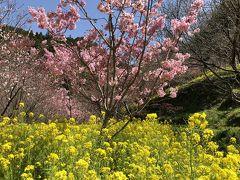 高知・里山の春景色! ~西川花公園