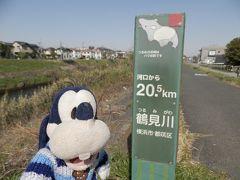 グーちゃん、鶴見川源流を見に行く!(グー散歩/コロナには絶対負けない!編)