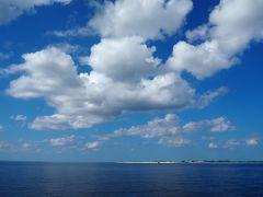 2020年2月 3回目の沖縄で二つのホエールウォッチングを体験する娘と3人旅③~2日目後半・最終日:ホエールウォッチング、ナガンヌ島上陸など