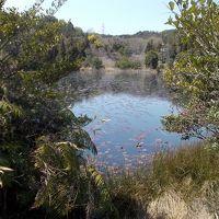 みやま公園 池めぐりのハイキング