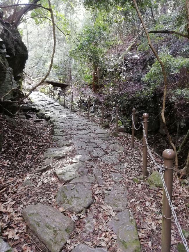 柳生街道は春日山と高円山の谷あいの道を通り奈良市市街地から柳生まで通じる古道です。<br />平安時代から鎌倉時代にかけて南都七大寺の僧達の修行の場でした。<br /><br />今から約300年前柳生新陰流が興されて以来、柳生の里には柳生街道を通り「柳生の剣」を求める武士や、柳生からマキや炭等の行商の人達が行き交ったそうです。<br /><br />柳生街道は奈良市内から忍辱山までの滝坂の道13㎞と<br />忍辱山から剣豪の里柳生までの9kmの剣豪の道へと続いています。<br /><br />一気に歩くのは少しきついので今回は滝坂の道だけ歩きました。<br />川のせせらぎと木々のざわめきを聞きながら。<br /><br />滝坂の道入り口から柳生入り口忍辱山まで13km。22000歩でした。<br />忍辱山(円成寺)から奈良市内までバスで30分です。<br /><br />柳生に着いてから奈良市内に戻るバスの便が非常に少ないので帰りのバスの時刻表を十分確認しておくことが大事です。<br /><br />逆コースで奈良駅から忍辱山迄行き奈良市内循環バス破石町迄下りてくると<br />バスは10分も待たずに来ますが、奈良から忍辱山に行くバスもとても少ないです。<br />JR奈良駅、近鉄奈良駅から忍辱山に行くバスも以下の通り。<br />JR奈良駅発    7:24、 9:11、11:40、12:45、16:24 、17:17<br />近鉄奈良駅発 7:31 、9:19 、11:48、12:53、16:32、17:25<br />