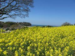 国東半島の菜の花畑ついでに昭和の町