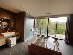2020年3月 週末温泉旅 in「THE HIRAMATSU HOTELS & RESORTS 仙石原」