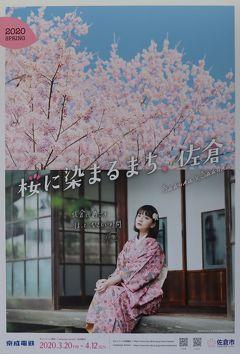 佐倉市散策(51)・・「桜に染まるまち.佐倉」を訪ねます。