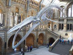 娘と2人でイギリスへ④ロンドン自然史博物館