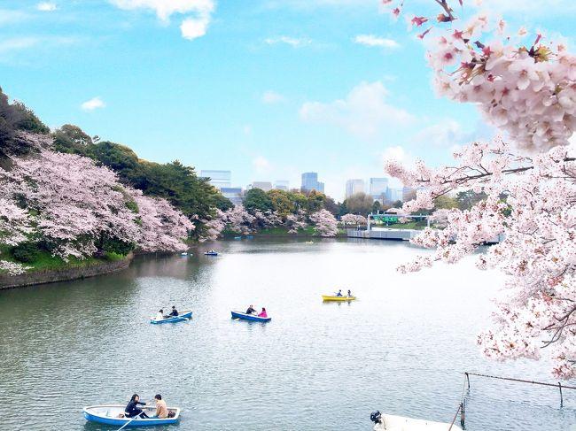 自粛要請をしっかり守る模範国民をめざしています。笑<br /><br />今年は桜を見に行くはやめようと思ってるので <br />きっと来年にはコロパニも落ち着いているということを信じ、過去写真を振り返ってみます