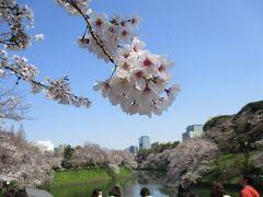 2020年3月 満開の桜(九段下)