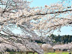 日高・鶴ヶ島・坂戸の旅行記