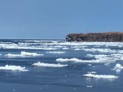 余りにも暇なので岬までドライブです・以外と流氷が見られました♪