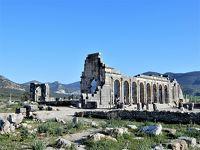baba友と巡るモロッコ周遊2400㎞の旅【3】2日目(メクネス・ヴォルビリス遺跡)