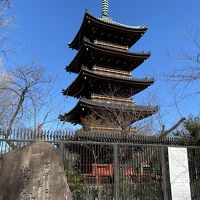 2020年2月 春の息吹を感じる上野公園&湯島天神