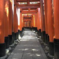 ***桜にはまだ早い春の京都***