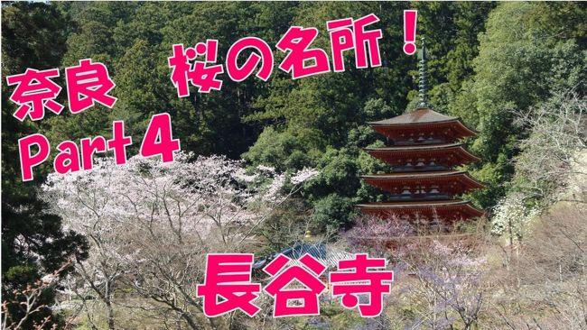 奈良県桜井市の長谷寺に行ってきました!<br />長谷寺は現在桜が満開です!?<br /><br />お客様もここは多かったですね!(^^)/<br /><br />https://www.youtube.com/watch?v=-Gj76d5VGf0&amp;t=4s<br />
