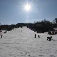 冬の軽井沢♪ Vol3 ☆軽井沢プリンスホテルドッグコテージの朝食とガラガラのスキー場へ♪