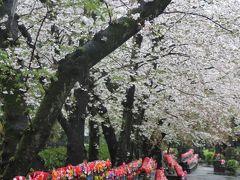 霙降る*東京さぬき倶楽部~芝公園~増上寺
