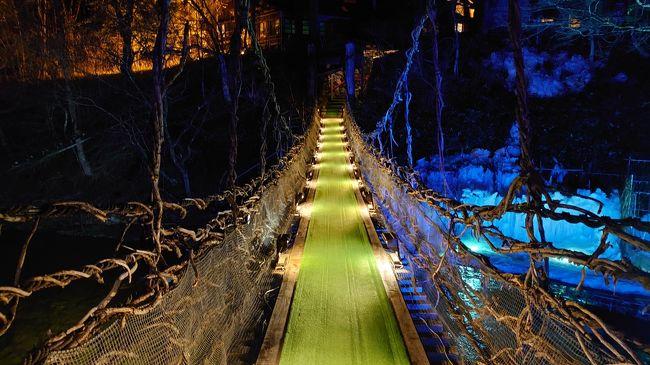 2020年3月 鬼怒川・湯西川温泉旅行②♪歴史のある温泉旅館でのんびり♪