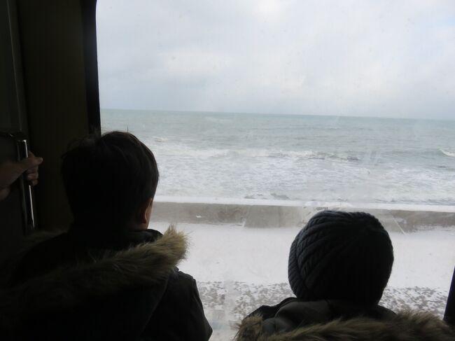 超長期休暇のGWを北海度で初めて過ごし、これは良いかもと思い、お子様達に雪の中で遊びまくる。っていうのをさせてあげたくなりました。<br />ということで、今年の少し長めの正月休みを利用して、北海道に行きました。<br />元旦は、自宅で家族でご挨拶し、実家にご挨拶。2日から2泊3日の旅です。<br />何しようと、ワクワクして計画をするものの、なんだか今年は異常なくらい暖冬で雪が少ないとの事。<br />イヤイヤ、そんなこと言っても、北海道だもの雪あるでしょう?と思いながら日々思っていたのです。<br />結果、行って見てびっくり。<br />数年前に家の辺りで積もった雪より少ないではないですか!<br />雪を求めて行き先を考え、帰る日にやっと少し雪が積もっていた札幌でした。<br />びっくり、少し残念の北海道でした。(いつかリベンジですね)<br />