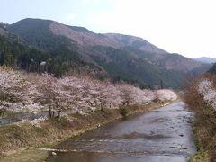 2018年・京都大原・春・桜