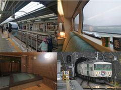 185系踊り子&SVO251系のお名残乗車+稲取温泉「赤尾ホテル」でまったりの旅~