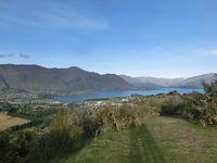 2020新春 ニュージーランド20:ワナカ 360度眺望のマウントアイアンを早朝登山