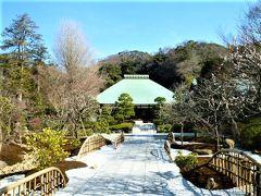 金沢街道巡りの東側;浄妙寺~十二所神社;を参拝/散策しました