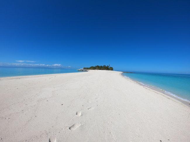 どこにあるんでしょう?でも、この綺麗な写真見てくれぇぇぇっい!<br /><br />フィリピンなんです!<br />セブに到着してから、車と船でセブ島を北上してマラパスクアまで<br />4時間位?相変わらず遠っ!<br />カランガマン島は、セブ島からも行けるそうですが、マラパスクアからは、さらにボートに揺られたっぷり2時間ん・・・<br />お尻がイタイ・・・<br /><br /><br />しかも、ここまで来て滞在が3日・・・仕方ないんです。お仕事もやってますからね!<br /><br />それでも、そんなこと以上に引き付けるものがあるんです。<br />サメとかね。シャークですよ、シャーク!<br /><br />https://youtu.be/V4DJQ9IDCsk<br /><br />といっても、人を食べるシャークではないんで、安心して潜れます。<br /><br />旅行記にするつもりはなかったので、ダイビング以外の写真はほとんど撮っていなくて、<br />ついでに動画も貼っておきましょう!<br /><br /><br />日程を最大限に使う為、27日に仕事を終え、羽田空港へGO!!!<br />深夜1:30発のJALでマニラへ飛び、もう慣れたマニラでのターミナル移動もそつなくこなし、<br />セブパシでセブへGO!!!<br />直行便で行っちゃうと基本当日中に着けないのが、夕方には到着できる夢のような行程・個人手配です。<br />夏に行ったときは、羽田でインボラしてくれ、ビジネスクラスでマニラへ行ったけど、さすがに連続はないね・・・<br /><br />帰りも、行きと逆パターン。<br />マニラを23:50発で、年越しは滑走路で。<br />マニラ市街の打ち上げ花火が至る所で上がっていて、日本じゃあり得ないレベル・・・来年は機内から撮ろう!<br /><br /><br />
