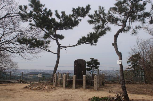 土日になるといつも多くの人がJR阪和線の新家駅からお菊の松までハイキングを楽しんでいますが、近くに住んでいながら初めて泉南市民の里の山桜を見たついでにお菊の松まで歩いてみました。<br /><br />お菊の松<br />関白豊臣秀次の子として生まれたお菊は、紀州山口村の代官の嫡男に嫁いでいました。 大坂夏の陣の際、大坂城に密書を届けるために、街道を避け山路の風吹峠を越え、堀河谷から松の大木がそびえる納経山にたどり着き、ここで、お菊は、髪を切り男姿に身をやつし、無事大坂城にたどり着いたと伝えられています。しかし、徳川方の捕らわれの身となり享年20才にて処刑されるという悲しい悲話が伝えられています。