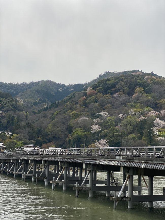 春の嵐山へ<br />人はそれなりにいますね(^O^)