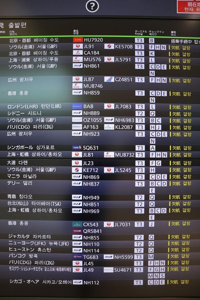親戚が5月にグアムで結婚式を予定。昨年11月に航空券を個人手配も、この状況下では事実上中止。今キャンセル払戻しは2万円、特別対応で全額返金となるまでじっと待っていますが、確認で羽田空港まで行ってきました。<br /><br />羽田空港は東京五輪を控え、2020年3月より国際線大増便、第2ターミナルでの国際線運航開始、3月14日に国際線ターミナルは第3ターミナルに名称変更。その現状を第1、第2、第3ターミナルの順番に見て廻りました。<br /><br />新型コロナで、羽田空港は当初思惑と大きく異なる状況に陥っていました。