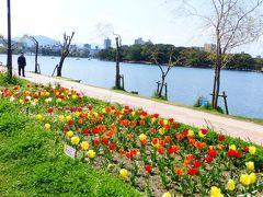 2020年 春 福岡市 桜名所巡り【舞鶴公園に向かう途中「大濠公園」立ち寄り編】