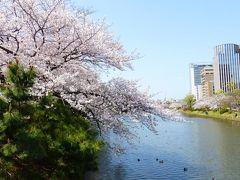 2020年 春 福岡市 桜名所巡り【桜満開の「福岡城上之橋」周辺とシェアサイクル返却編】