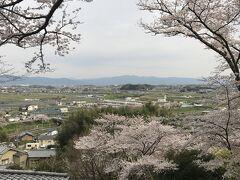 王寺~竜田川散歩