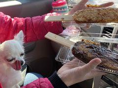 ペットと行く桜と三河五平餅の日帰りドライブ旅 2